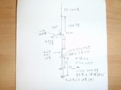 P81501411